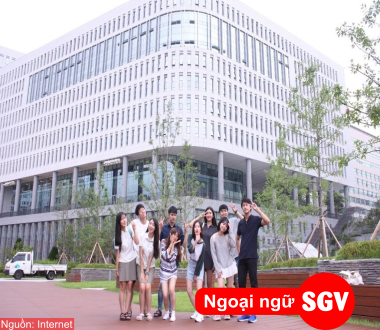 Giá trị của TOPIK, SGV