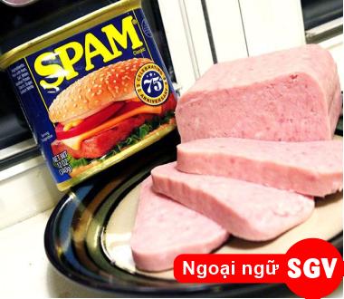 SGV, spam là món gì
