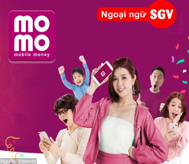 SGV, Ví MoMo là gì